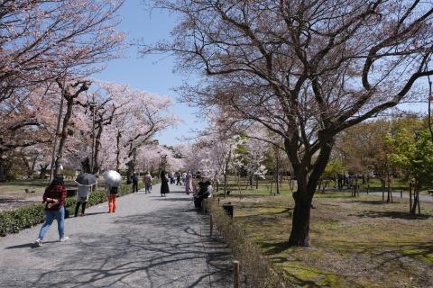 Kyoto2104013.jpg