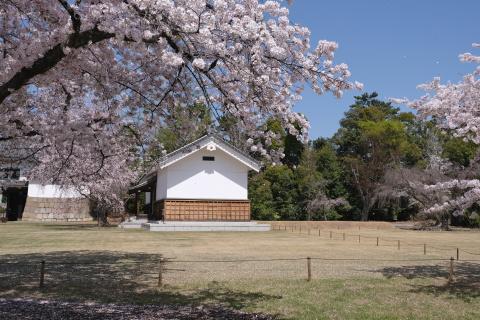 Kyoto2104016.jpg
