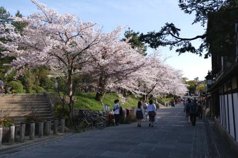 Kyoto2104059.jpg