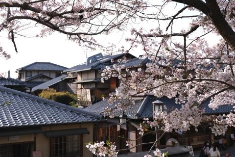 Kyoto2104061.jpg