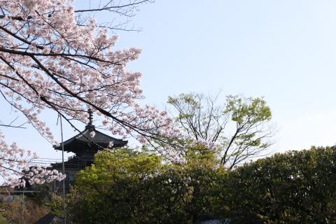 Kyoto2104064.jpg