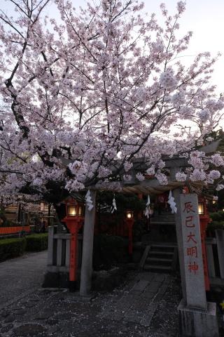 Kyoto2104069.jpg