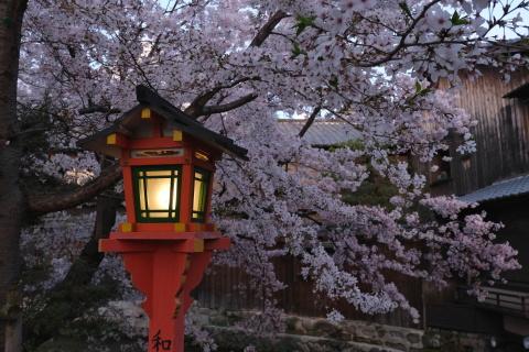 Kyoto2104070.jpg