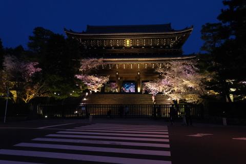 Kyoto2104073.jpg