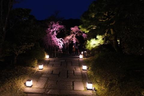 Kyoto2104074.jpg